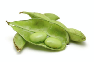 Can Soy Foods Aid Your PCOS Fertility Program?