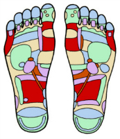 Using reflexology for fertility